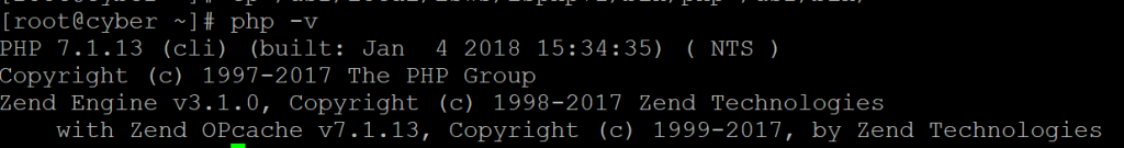 php -v output